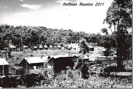 Hoffmans - 10001