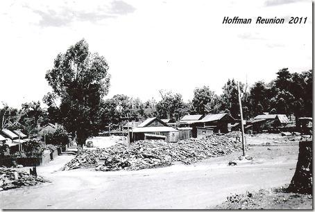 Hoffmans - 20001