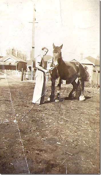Reece Thomas Nicholson & Horse