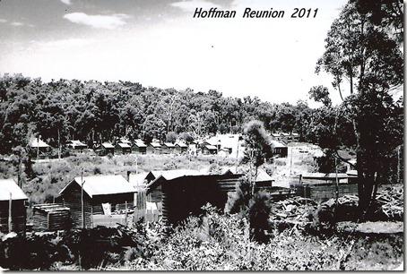 hoffmans-10001